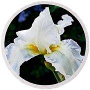 White Iris At Pilgrim Place In Claremont-california Round Beach Towel