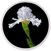 White Iris On Black Background Round Beach Towel