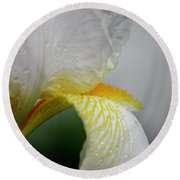 White Iris Study No 6 Round Beach Towel