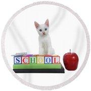 White Kitten Back To School Round Beach Towel