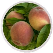 White Lady Peaches On A Branch Round Beach Towel