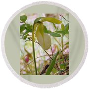 White Lady Slipper Round Beach Towel