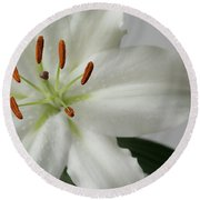 White Lily 1 Round Beach Towel