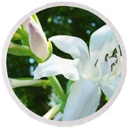 White Lily Flowers Art Prints Lilies Giclee Baslee Troutman Round Beach Towel