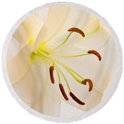 White Lily Square Version Round Beach Towel