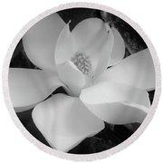 White - Magnolia - Beauty Round Beach Towel