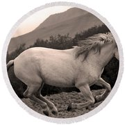 White Mare Gallops #1 -  Close Up Sepia Round Beach Towel