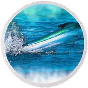 White Marlin -  From The Outer Banks Of North Carolina To Cape M Round Beach Towel