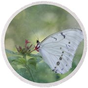 White Morpho Butterfly Round Beach Towel