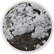 White Moss Round Beach Towel