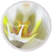 White Orchid Art By Sharon Cummings Round Beach Towel