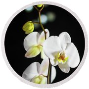 White Orchid On Black Bw Round Beach Towel