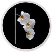 White Orchids On Black Vertical Round Beach Towel