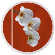 White Orchids On Terracotta Vdertical Round Beach Towel