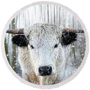 White Park Cattle In The Snow Round Beach Towel