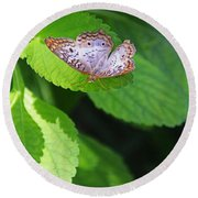 White Peacock Butterfly II Round Beach Towel