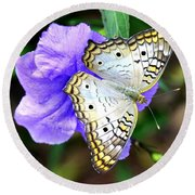 White Peacock Butterfly On Purple 2 Round Beach Towel