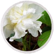 White Peonia Round Beach Towel