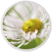 White Petal Flower Abstract Round Beach Towel