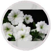 White Petunias Round Beach Towel