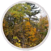 White Pine Hollow State Forest Round Beach Towel