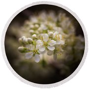 White Plum Blossom- 2 Round Beach Towel