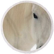 White Pony In Profile Round Beach Towel