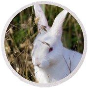 White Rabbit Round Beach Towel