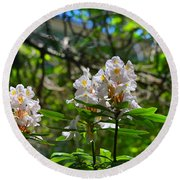 White Rhododendron Blooms Round Beach Towel