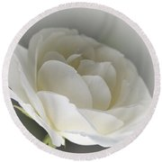 white Rose -1- Round Beach Towel by Issabild -