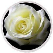 White Rose-11 Round Beach Towel