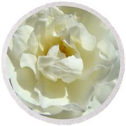 White Rose Art Prints Summer Sunlit Roses Baslee Troutman Round Beach Towel