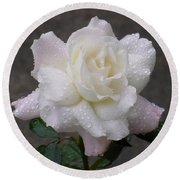 White Rose In Rain - 3 Round Beach Towel