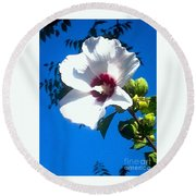 White Rose Of Sharon Hanging Out In The Sky Round Beach Towel