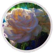 White Roses In The Garden - Backlit Flowers - Summer Rose Round Beach Towel