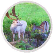 White Stag And Hind 2 Round Beach Towel