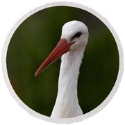 White Stork 5 Round Beach Towel