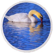 White Swan Drinking Water In A Pond Round Beach Towel