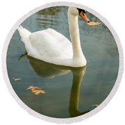 White Swan With Reflection Round Beach Towel