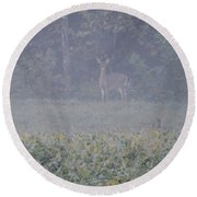 White Tail Deer Round Beach Towel