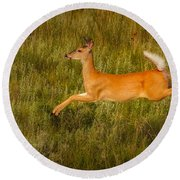 White-tailed Doe Leaping Round Beach Towel