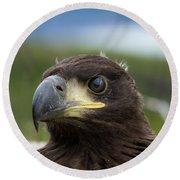 White-tailed Eagle #1 Round Beach Towel