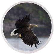 White-tailed Eagle Against Cliffs Round Beach Towel