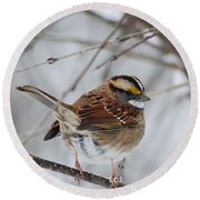 White Throated Sparrow 2 Round Beach Towel