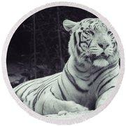 White Tiger 16 Round Beach Towel