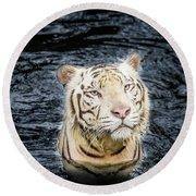 White Tiger 20 Round Beach Towel