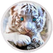 White Tiger Cub Round Beach Towel