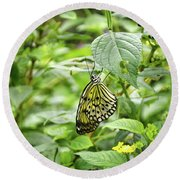 White Tree Nymph Round Beach Towel