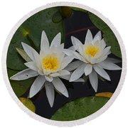 White Water Lilies Round Beach Towel