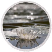 White Waterlily 3 Round Beach Towel